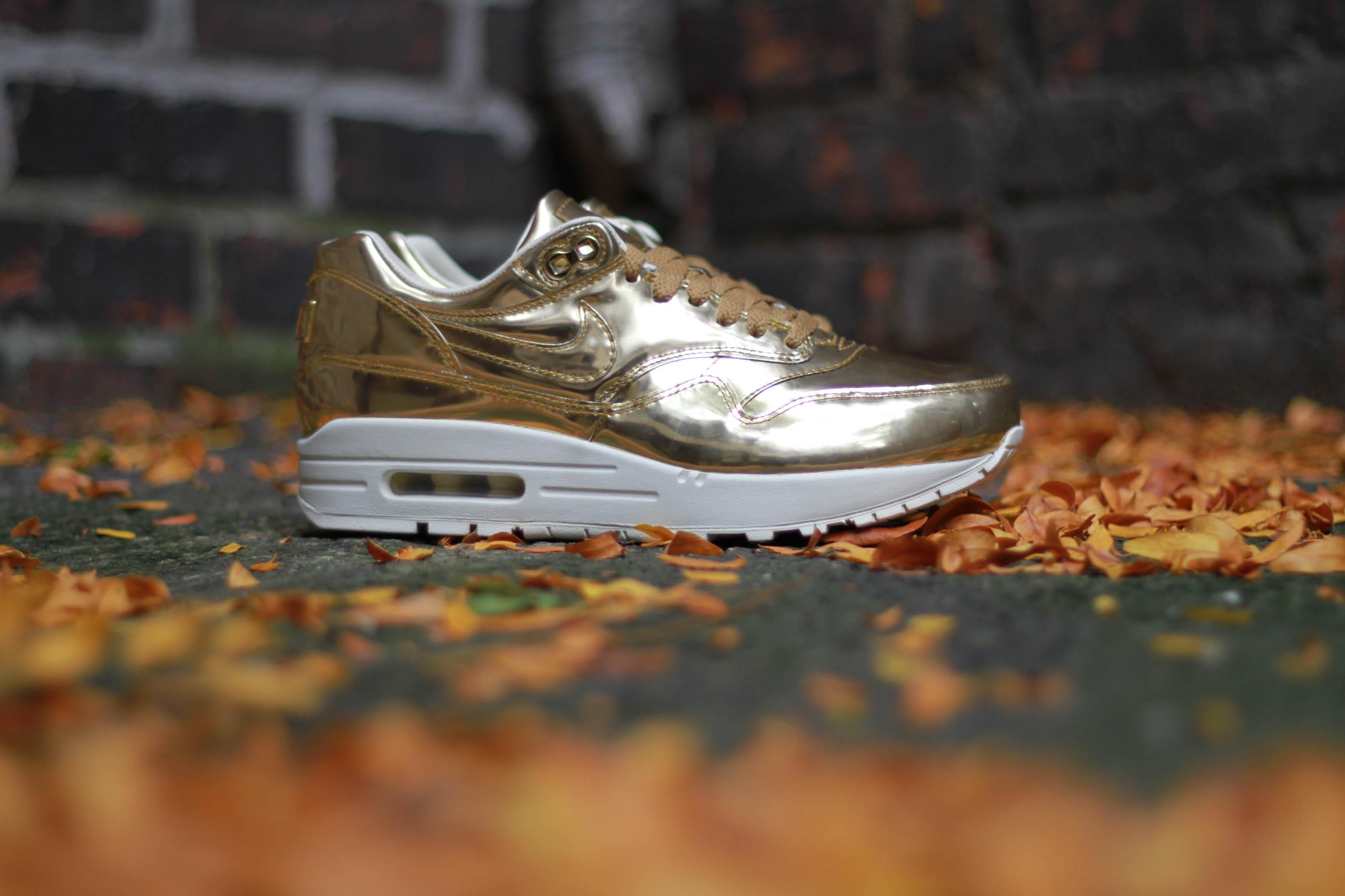 dans la bible salomon - Nike Air Max 1 SP Liquid Metal |