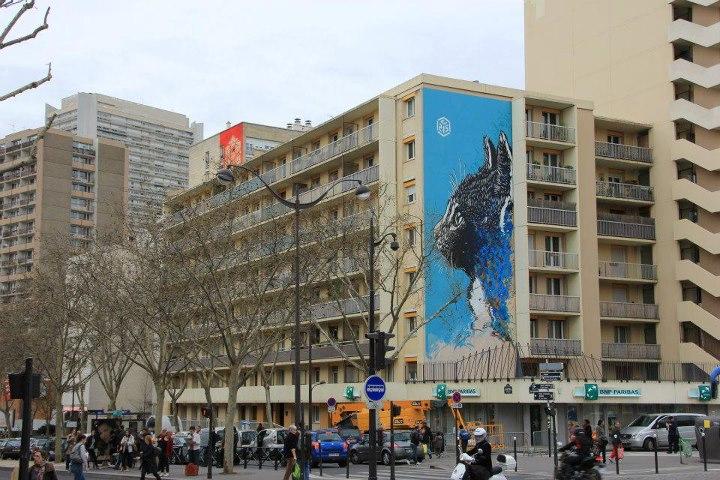 C215 X obey Fresque murale