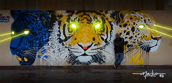 Marko-93-Tigre-Bengal